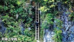 湖南桑植天梯上的求学路